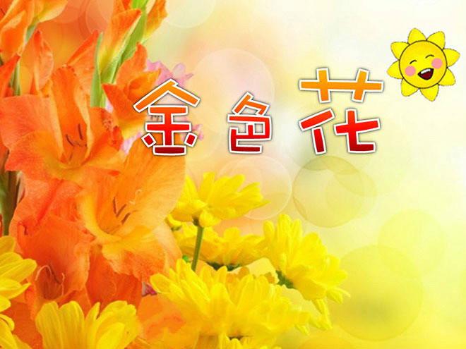 《诗两首-金色花》PPT课件