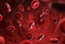 血液粘稠不能吃哪些食物_如何降低