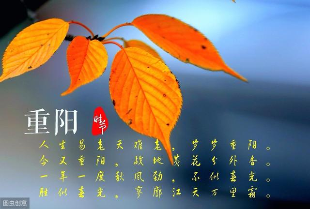 重阳节当孝老,其实养生也当时 #清风计划#