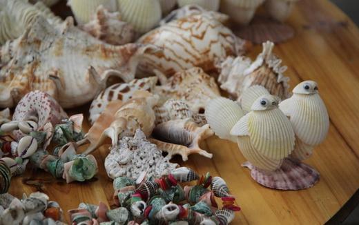 贝壳工艺品的制作方法和文化价值