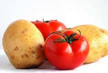 原来番茄和它才是绝配 抗疲劳、防衰老 营养翻倍!