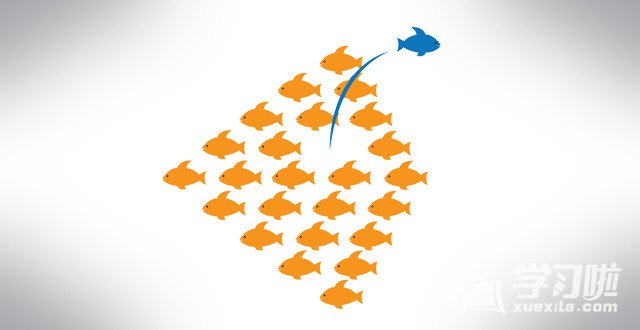 创业的优惠政策_大学生创业有什么优惠政策