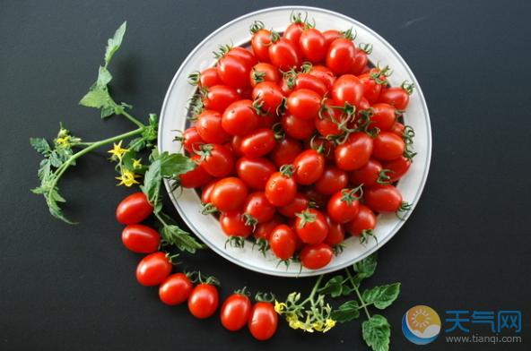 圣女果里的维生素A的含量在果蔬中属于佼佼者-圣女果的营养价值及功